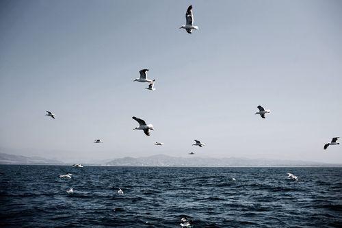 Fishermen13